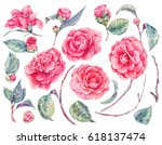 watercolor floral set of... | Shutterstock . vector #618137474