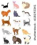 Stock vector cats breeds set 618192341