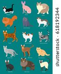 cats breeds set with breed name | Shutterstock .eps vector #618192344