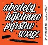 handwritten lettering vector... | Shutterstock .eps vector #618239534