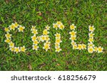 Small photo of Inscription chill on the grass. Flowers frangipani.