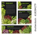 lettuce salads vector posters... | Shutterstock .eps vector #618284279