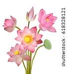 beautiful lotus flower bouquet... | Shutterstock . vector #618328121