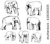 vector set of elephants  hand... | Shutterstock .eps vector #618330335