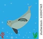 seal  sea lion  icon  logo ... | Shutterstock .eps vector #618347465