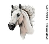 Stock vector the white horse head profile sketch vector chart color picture 618392591
