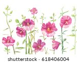 hollyhock drawing. flowers... | Shutterstock . vector #618406004