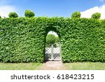 round shaped topiary green... | Shutterstock . vector #618423215