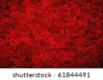 Stock photo background of flowers 61844491