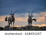 two large antelopes with... | Shutterstock . vector #618451247