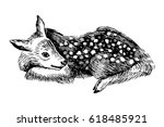 hand drawn baby deer in vintage ... | Shutterstock .eps vector #618485921