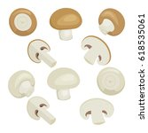 fresh champignon mushrooms set... | Shutterstock . vector #618535061