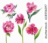 floral set  peonies and lilies... | Shutterstock . vector #618556097