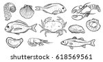 hand drawn seafood set.... | Shutterstock .eps vector #618569561