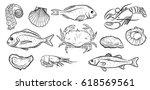 Hand Drawn Seafood Set....