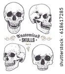 anatomical skulls vector set.... | Shutterstock .eps vector #618617285