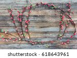 frame from peach branches with... | Shutterstock . vector #618643961