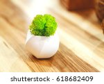 decorative green moss in... | Shutterstock . vector #618682409