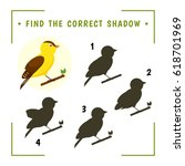 find the correct shadow.... | Shutterstock .eps vector #618701969