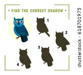 find the correct shadow.... | Shutterstock .eps vector #618701975