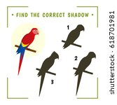 find the correct shadow.... | Shutterstock .eps vector #618701981