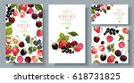 vector mix berry vertical... | Shutterstock .eps vector #618731825