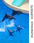 hong kong   april 16  dolphins... | Shutterstock . vector #61890070