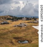 Small photo of Spring crocus at Velika planina in Slovenia with old shepherd cottages all around.