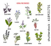 herbal remedies for pms. hand... | Shutterstock .eps vector #618921731