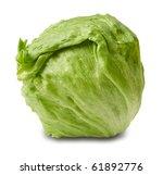 Iceberg Salad   Head Of Lettuce