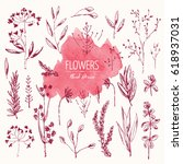 collection of floral elements  ... | Shutterstock .eps vector #618937031