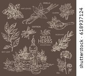 collection of herbs and spice ...   Shutterstock .eps vector #618937124