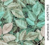 seamless tropical flower  plant ... | Shutterstock . vector #619097915