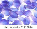 Studio Shot Of Blue Colored...