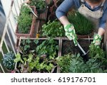 woman planting vegetables and... | Shutterstock . vector #619176701