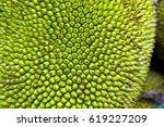 Closeup On A Jackfruit ...