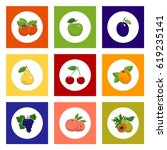 fruit and berry round icons ... | Shutterstock .eps vector #619235141
