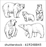 set of isolated hand drawn...   Shutterstock .eps vector #619248845