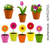 flowers in pot collection  | Shutterstock . vector #619312511