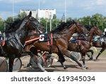 harness horse racing. horse... | Shutterstock . vector #619345034