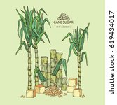 background with sugarcane  cane ...   Shutterstock .eps vector #619434017