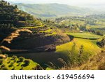 view of olive grove in the... | Shutterstock . vector #619456694