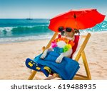jack russel dog resting and... | Shutterstock . vector #619488935