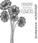 drawing flowers illustration... | Shutterstock .eps vector #619691069