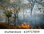 Fire In Bush   Zambia