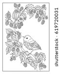 bird and flower coloring page | Shutterstock .eps vector #619720031