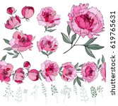 set with different peonies on...   Shutterstock .eps vector #619765631