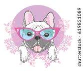 bulldog  vector  illustration | Shutterstock .eps vector #619821089
