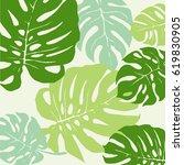 green monstera tropical leaf... | Shutterstock .eps vector #619830905