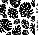Black And White Monstera...